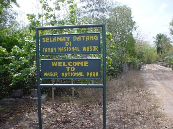 taman-nasional-wasur-papua